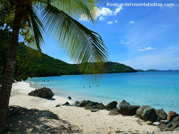 Cinnamon Bay Beach, St. John: The water feels as good as it looks!
